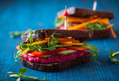 Vegan sandwiches Stock Photos