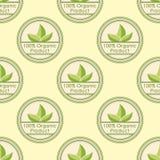 Vegan sans couture de vintage de modèle de bio de ferme nourriture saine organique d'eco Photos stock