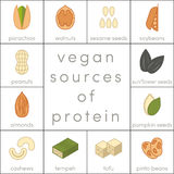 Vegan sources of protein. Food icons for infographic Royalty Free Stock Images