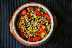 Vegan spelt salad Royalty Free Stock Images