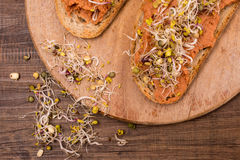 Vegan spread from beans Royalty Free Stock Images