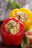 Vegan stuffed peppers with rice Royalty Free Stock Photography