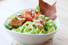 Vegan Taco Salad. Romaine, Avocado, Salsa, Refried beans, Sour Cream, Hot Peppers & Nacho chips Royalty Free Stock Photography