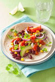 Vegan taco with vegetable, kidney beans and salsa Royalty Free Stock Images