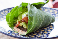 Vegan Taco Wrap Royalty Free Stock Image