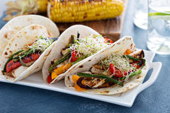Vegan tacos with grilled tofu and vegetables royalty free stock images