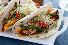 Vegan tacos with grilled tofu and vegetables. Vegan tacos with grilled tofu, herbs and vegetables Stock Image