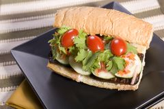 Vegan Tofu Banh Mi Sandwich Royalty Free Stock Photo