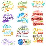 Vegan vector healthy vegetarian food eco vegetable fruit lettering sign illustration fruity handwritten logotype. Vegetated set of organic meal isolated on royalty free illustration