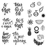 Vegan. Vector set of hand drawn lettering phrases, food design. Stock Images