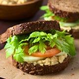 Vegan Wholegrain Sandwich Royalty Free Stock Images