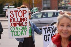 Free Vegan Woman Of Mixed Race Protesting Against Cruelty To Animals And Eating Meat With Sign Saying Stop Killing Animals Go Vegan Tod Royalty Free Stock Photos - 125320288
