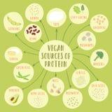 Veganistbronnen van proteïne Stock Foto