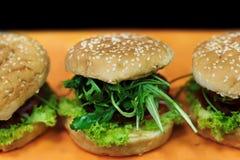 Veganistburgers Royalty-vrije Stock Foto