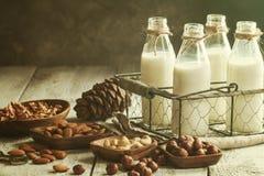 Veganistmelk van noten stock afbeelding