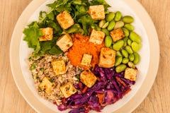 Vegano di stile asiatico o insalata piccante del tofu del vegetariano Fotografie Stock