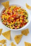 Vegano y comida sana Salsa mexicana foto de archivo libre de regalías