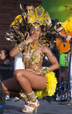 Vegas kocha Brazylia Fotografia Stock