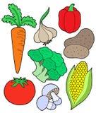 vegatable的收藏 免版税图库摄影
