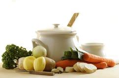 vegatable的汤 库存照片