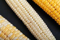 Vegatable Nahaufnahmehintergrund des Mais stockfotos