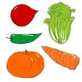 vegatables 免版税库存照片
