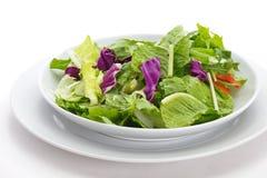 Vegatables salad Stock Image