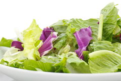Vegatables salad Royalty Free Stock Image
