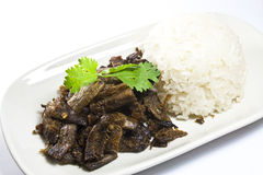 Vegatarian fried meat with sticky rice Stock Photos