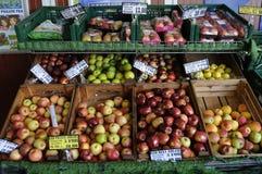 VEGES胡椒和和苹果计算机果子待售 免版税库存照片