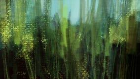 Vegetação da natureza da paisagem do campo de milho com pintura da ilustração do céu azul Imagem de Stock