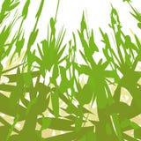 Vegetação estranha (vetor) ilustração do vetor