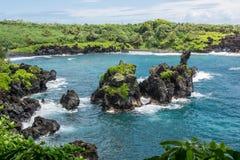 A vegetação na costa em Maui Imagem de Stock