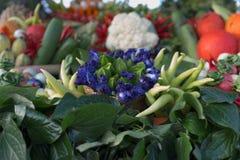 Vegetabe和草本健康食物的 图库摄影