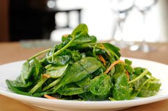 Vegetabels Stock Photo