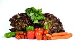 Vegetable ассортименты с ароматичным заводом Стоковое Изображение RF