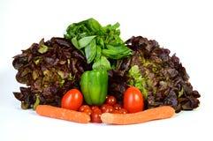 Vegetable ассортименты с ароматичным заводом Стоковые Фотографии RF