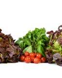 Vegetable ассортименты с ароматичным заводом Стоковые Изображения RF