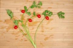 Vegetable дерево Стоковые Изображения RF