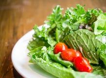 Vegetable еда салата, чистых и здоровых Стоковое Фото