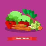 Vegetable иллюстрация вектора продуктов питания в плоском дизайне стиля Здоровый плакат концепции иллюстрация вектора