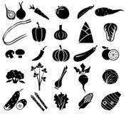 Vegetable комплект значка Стоковые Фото