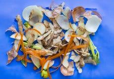 Vegetable корка Стоковое Фото