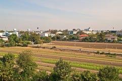 Vegetable поле Стоковые Фото