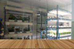 vegetable растущее в системе контроля температуры с искусственным Стоковые Фотографии RF