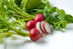 Vegetable редиска Стоковое Изображение