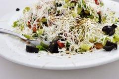Vegetable салат на белой плите стоковая фотография
