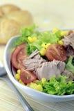 Vegetable салат с туной стоковая фотография