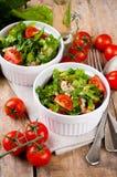 Vegetable салат с шпинатом Стоковое Изображение RF