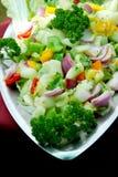 Vegetable салат Стоковые Изображения RF
